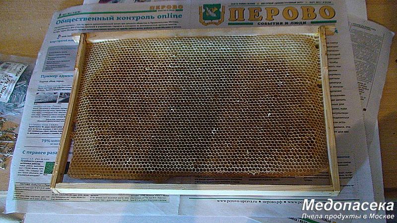 Купить сушь пчелиную