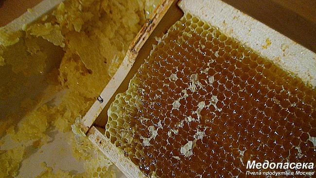 Почему на Медопасеке мед такой вкусный.