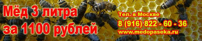 Натуральный мед от производителя по низким ценам в Москве